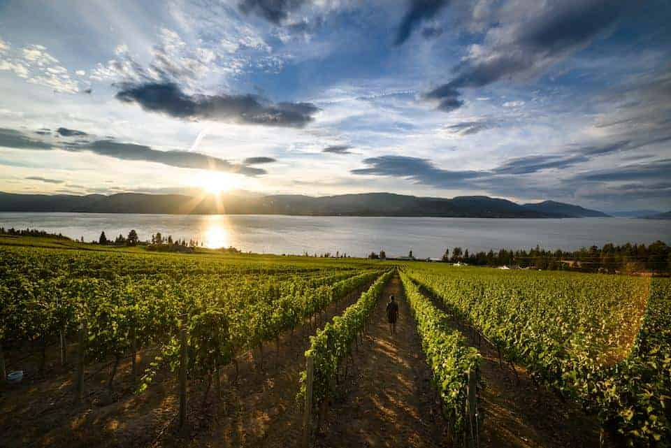 Forbes – Luxurious Transportation in the Okanagan